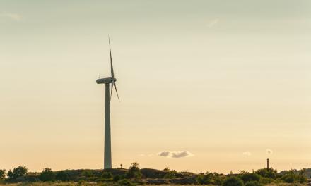 Şcoala care va converti 8.000 de mineri în tehnicieni pentru industria regenerabilelor