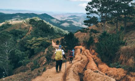 Bihorenii se pot califica gratuit ca ghizi turistici, salvamari și paznici de vânătoare